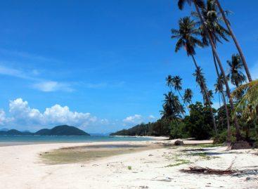 Der Bachelor – Schweizer Trash TV liebt Koh Samui in Thailand