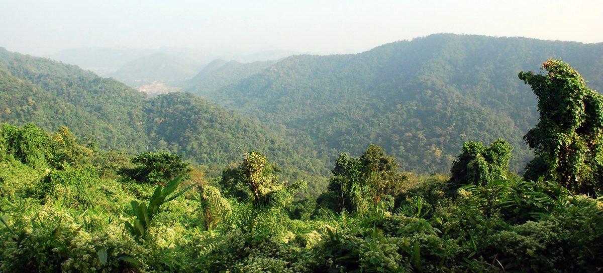 Das Hala Bala Wildlife Naturschutzgebiet – der ASEAN's Amazonas